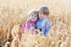 2 маленьких мальчика отпрыска имея потеху и говоря на желтой пшенице Стоковые Фотографии RF