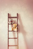 2 маленьких плюшевого медвежонка Стоковые Изображения RF