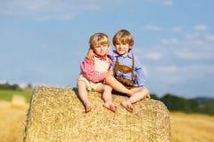 2 маленьких друз сидя на связке сена Стоковое Изображение