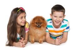 3 маленьких друз Стоковое Изображение