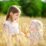 2 маленьких сестры в пшеничном поле на летний день Стоковое Фото