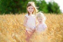 2 маленьких сестры идя счастливо в пшеничное поле Стоковые Фотографии RF