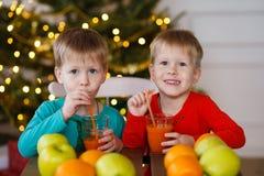 2 маленьких усмехаясь дет, мальчики выпивают фруктовый сок на предпосылке рождественской елки Счастливые дружелюбные дети Стоковые Изображения