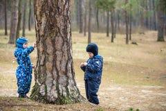 2 маленького ребенка играя, на ландшафте осени, смотря и усмехаясь около большого старого дерева Стоковая Фотография RF