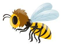 Маленькое летание пчелы на белой предпосылке иллюстрация вектора