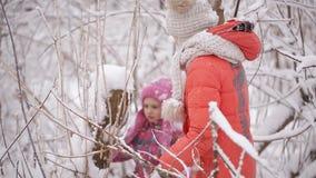 2 маленькой девочки спутаны в снежном лесе видеоматериал