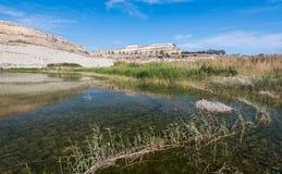 Малое естественное озеро с водой и заводами Стоковая Фотография
