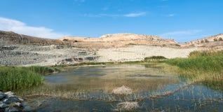 Малое естественное озеро с водой и заводами Стоковые Фото