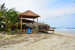 Малое кафе, голубой стул и деревья на песчаном пляже Стоковое фото RF