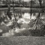 Малое озеро Стоковая Фотография RF