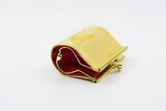 Малое портмоне для девушек Стоковые Фотографии RF