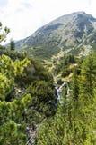малое река в горе Pirin, Болгарии стоковые изображения