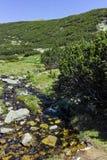 Малое река в горе Pirin стоковая фотография rf