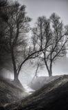 Малое река в тумане стоковые изображения
