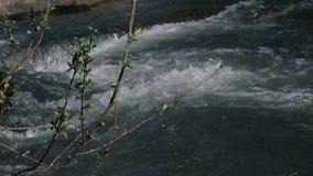 Малое река горы сток-видео
