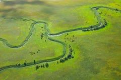 Малое река на зеленом лужке стоковые фото