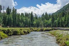 Малое река на Fairy луге с предпосылкой Nanga Parbat, Pakist Стоковые Фотографии RF
