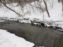 Малое река с деревьями в зиме стоковые изображения