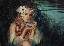 Мал-ушастая фея Стоковые Фото