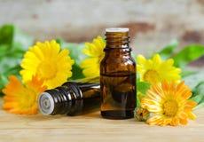 Малые бутылки масла calendula (выдержки, тинктуры, вливания) Стоковое Изображение RF