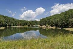Малые запруда или резервуар в красивой горе Plana стоковое фото rf