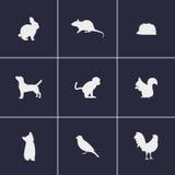 Малые значки животных Стоковое Фото