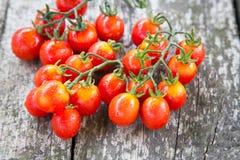 Малые красные томаты вишни на старом деревянном столе в деревенском стиле Стоковые Изображения RF