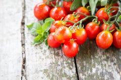 Малые красные томаты вишни на старом деревянном столе в деревенском стиле Стоковое Фото