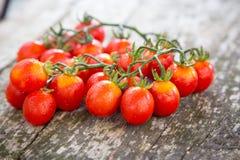 Малые красные томаты вишни на старом деревянном столе в деревенском стиле Стоковые Изображения