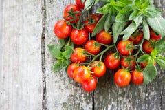 Малые красные томаты вишни на старом деревянном столе в деревенском стиле Стоковое Изображение RF
