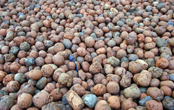 Малые круглые камни Стоковое фото RF