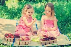 Малые милые смешные девушки (сестры) на пикнике Стоковое Изображение