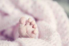 Малые ноги Стоковые Изображения RF