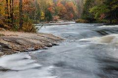 Малые речные пороги и красочный лес осени на реке Oxtongue Стоковое Фото