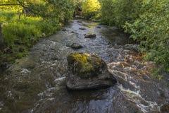 Малые речные пороги Стоковая Фотография