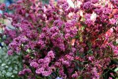 Малые розовые цветки в букете на рынке Стоковое Фото