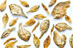Малые сухие рыбы от солнца на белой предпосылке Стоковое Изображение RF
