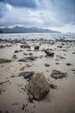 Малые утесы на пляже Стоковая Фотография