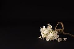 Малый букет белых цветков на черной предпосылке Стоковая Фотография RF