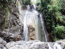 Малый водопад в одичалых джунглях Остров Palawan видеоматериал