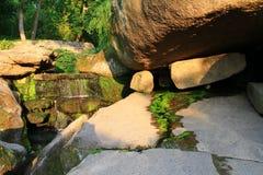Малый водопад в парке Стоковые Изображения