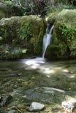 Малый водопад с silk влиянием Стоковые Фото