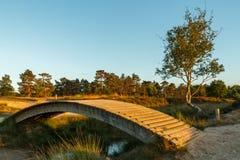 Малый деревянный мост светом захода солнца Стоковые Фотографии RF
