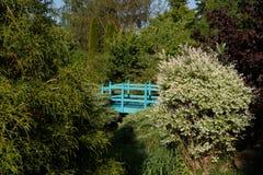 Малый зеленый footbridge над прудом сада весны стоковое изображение