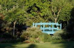 Малый зеленый footbridge над прудом сада весны стоковое изображение rf