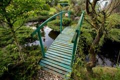 Малый зеленый footbridge над прудом стоковое фото rf