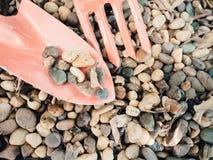 Малый камень на оранжевом инструменте лопаты для садовничать с космосом экземпляра Стоковые Фотографии RF