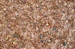 Малый камень на тротуарах Стоковые Фото