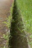 Малый канал Стоковые Изображения