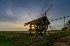 Малый коттедж в рисовых полях солнце светит до конца стоковое фото rf